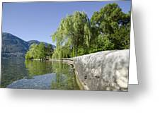 Lakefront With Trees Greeting Card
