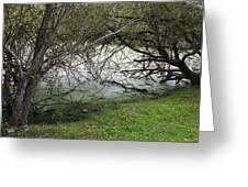 Lakeside View 1 Greeting Card