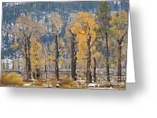 Lamar Valley In The Fall Greeting Card