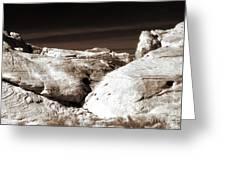 Landing In The Desert Greeting Card