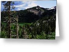 Landscape - Carson Pass 1 Greeting Card