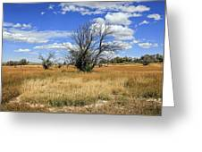 Landscape In Wy Greeting Card