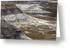 Landscape Petrified Forest Greeting Card
