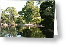 Landscape Tree Reflections Greeting Card