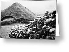 Landscape With Hydrangeas Greeting Card