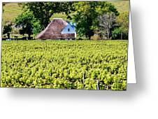 Landscape With Vineyard Greeting Card by Werner Lehmann