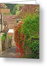 Lane And Ivy In St Cirq Lapopie France Greeting Card