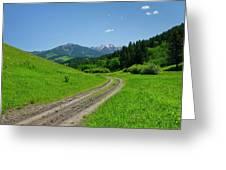 Lane View Of Crazy Mountains Greeting Card