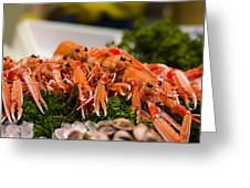 Langoustines At The Market Greeting Card