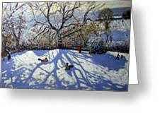 Large Tree And Tobogganers Greeting Card by Andrew Macara