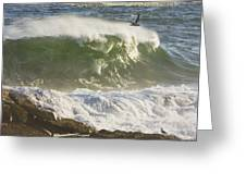 Large Waves And Seagulls Near Pemaquid Point On Maine Greeting Card