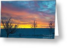 Larimer County Winter Sunrise Greeting Card by Harry Strharsky