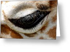 Lashes On The Eye Greeting Card