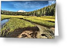 Lassen Meadows Greeting Card