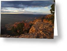 Last Rays At Grand Canyon Greeting Card