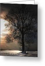 Last Snow Of Winter Greeting Card