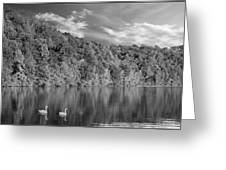 Late Afternoon At The Lake - Bw Greeting Card