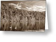 Late Afternoon At The Lake - S Greeting Card
