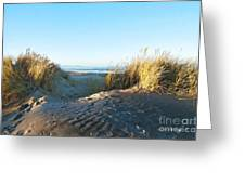 Late Afternoon Light Waikuku Beach Greeting Card
