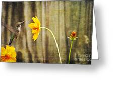Late Summer Delight Greeting Card