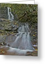 Laurel Falls 6239 8 Greeting Card