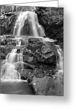 Laurel Falls In The Smoky Mountains Greeting Card