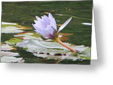 Lavendar Aqua Queen Greeting Card
