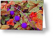Lavender Berry Greeting Card