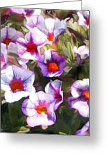 Lavender Million Bells Flowers Greeting Card