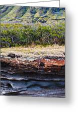 Layers And Textures Greeting Card