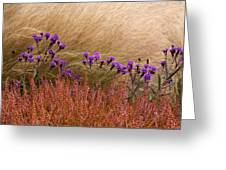 Layers Greeting Card by Denice Breaux