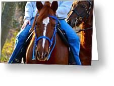 Lead Horse Greeting Card