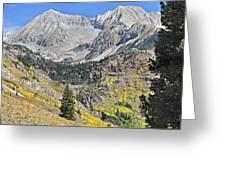 Lead King Basin Road 3 Greeting Card