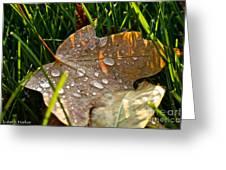 Leaf Beads Greeting Card