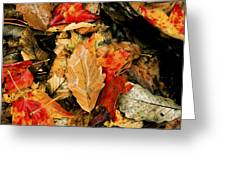 Leaf Fresco Greeting Card