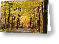 Leaf Lit Path Greeting Card