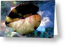 Leaf Portrait 6 Greeting Card