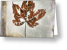 Leaf  With Textured Effect Greeting Card
