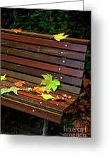Leafs In Bench Greeting Card