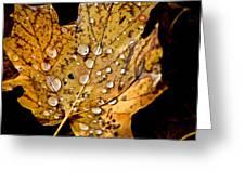 Leafwash Greeting Card