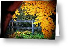Leaves And Fence Greeting Card