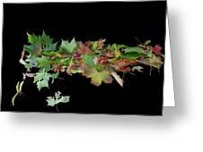 Leaves On Sidewalk Greeting Card