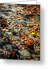 Leaves On The Boardwalk Greeting Card