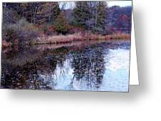 Leaves On Water Greeting Card