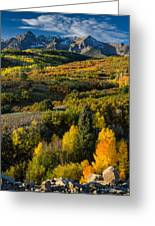 Leaves Turning At Dallas Divide Greeting Card
