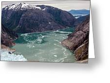 Leconte Glacier Greeting Card by Mike Reid