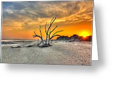 Left Standing Greeting Card