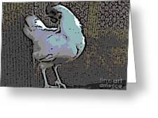 Leghorn Greeting Card