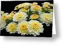 Lemon Meringue Chrysanthemums Greeting Card