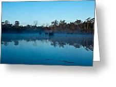 Lenthalls Dam 11 Greeting Card by David Barringhaus